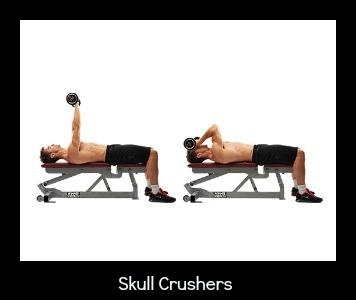 SkullCrusher 300
